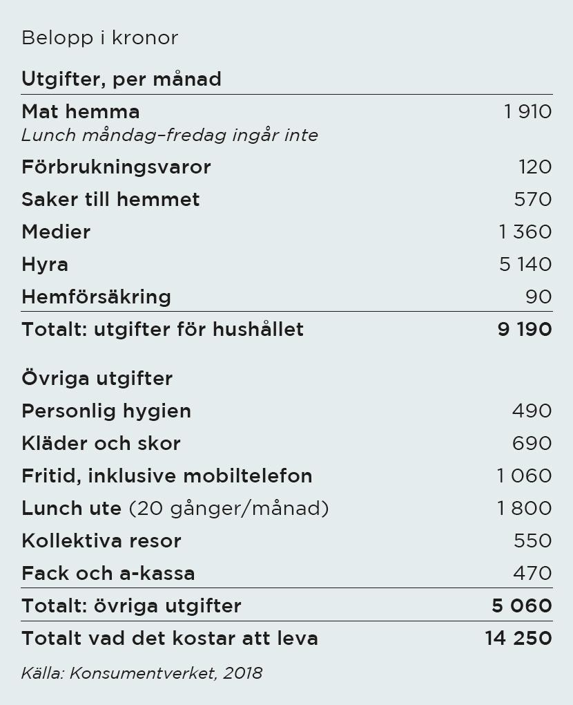 Exempel på hur mycket det kostar att leva